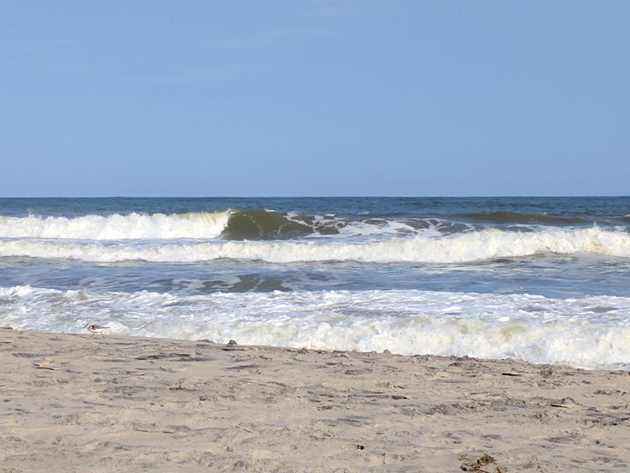 Popular Surf Spot