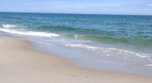 Clear Seas